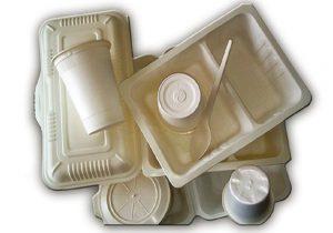 فروش عمده ظروف یکبار مصرف کاغذی
