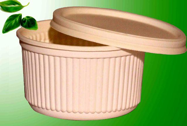 ظروف یکبار مصرف گیاهی در قم