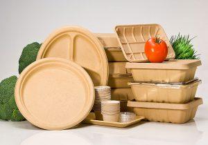 ظروف یکبار مصرف گیاهی خوراکی